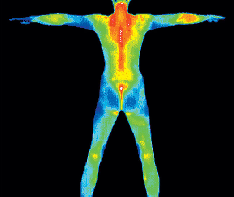 Thermography Knows Your Secrets